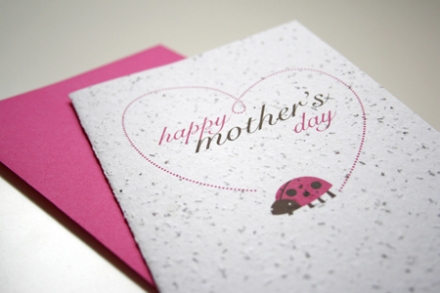 MothersDay_PlantableLadyBug