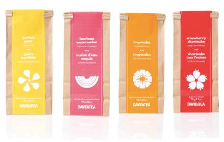 DAVIDsTEA Iced Tea Packs