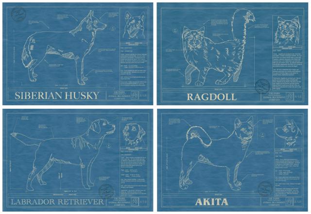 Dog Blueprints