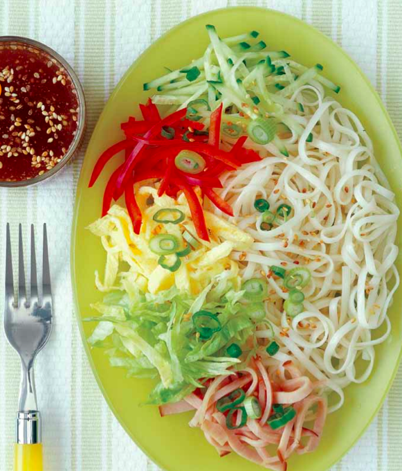 Japanese Cold Noodle Chef Salad