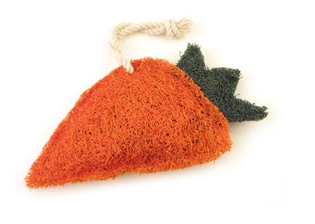 Carrot Loofah