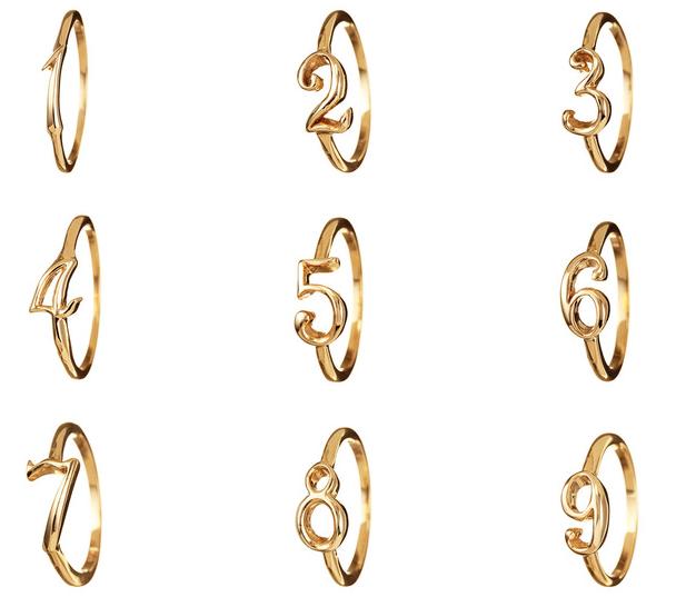 Number Rings