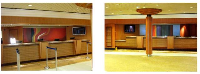 Ruth Palmer Cruise Ship