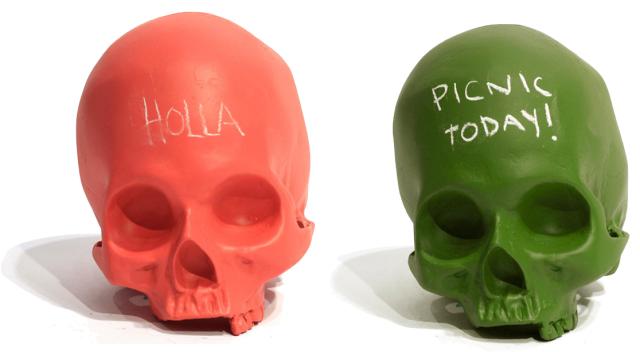 Homo Sapien Chalkboard Skull