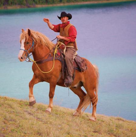 YukonHorses.com Trail Rides