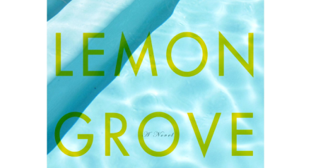 Book Report The Lemon Grove
