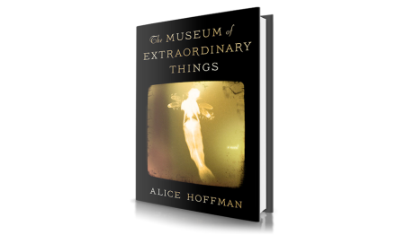Book Report The Museum of Extraordinary Things