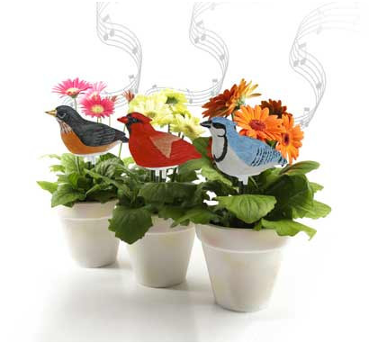 Singing Bird Plant Moisture Measure