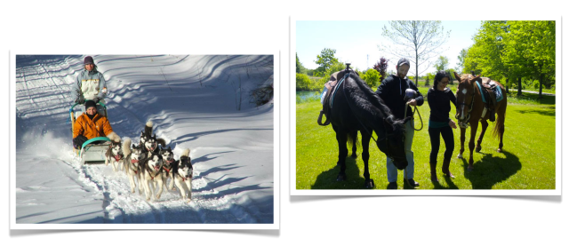 Breakaway Experiences Dog Sledding and Horseback Riding
