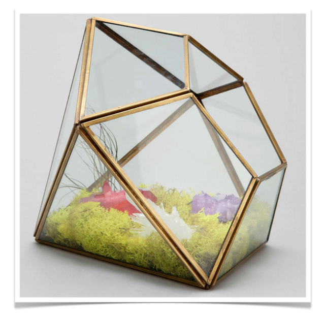 Diamond Terrarium