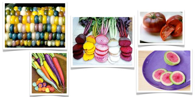 Smart Seeds Heirloom Vegetables