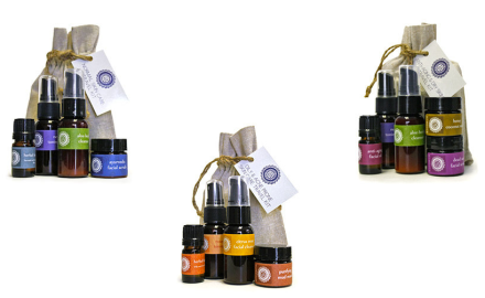 Annmarie Skincare Travel Sets