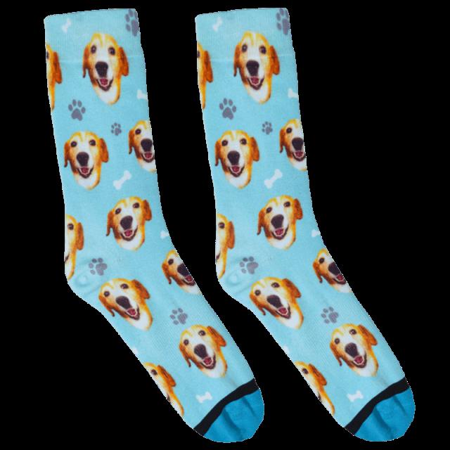 DivvyUp Socks